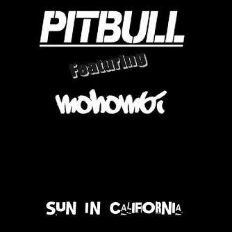 Pitbull ft Mohombi - sun in California