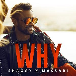Shaggy & Massari - why